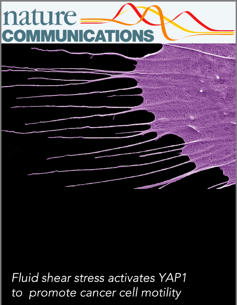 nature et al lee publications communications